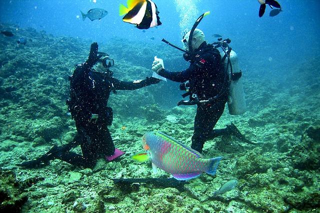 Češi milují exotiku a potápění se rozhodně nevyhýbají. Bez pojištění se může dovolená změnit v horor